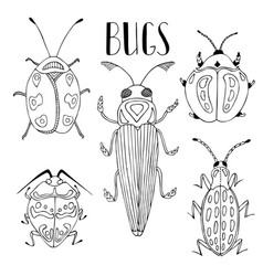 Beetle collection of beetles and bugs vector