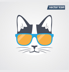 cat in sunglasses vector image vector image