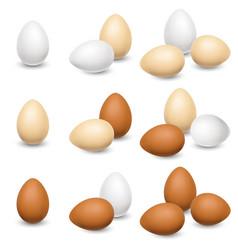 Egg set on a white background vector