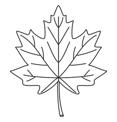 line art black and white maple leaf vector image