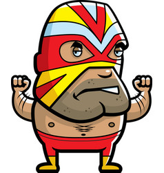 masked luchador vector image