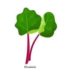 Rhubarb iconcartoon icon isolated vector