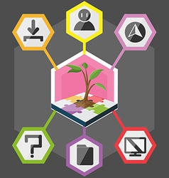 Tree Hexagon Modern Info Graphic Color full vector image