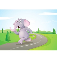 An elephant running at the road vector