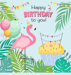 Birthday card congratulation template vector