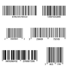 collection product codes isolated on white vector image
