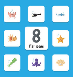 Flat icon nature set tentacle fish conch and vector