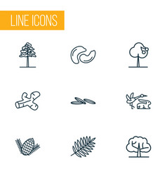 Nature icons line style set with pine caraway vector