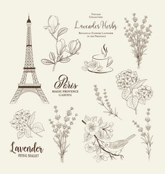 Paris romantic collection vector