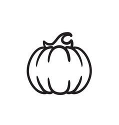 Pumpkin sketch icon vector