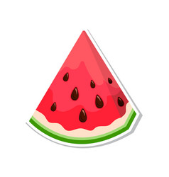 watermelon sweet fruit isolated berries on white vector image