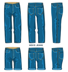 Man jeans pants and shorts vector image vector image