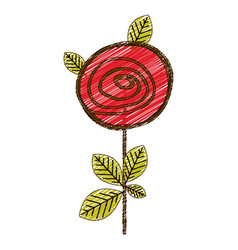 color pencil drawing of button rose with leaves vector image vector image