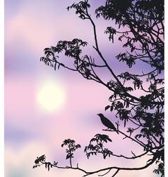 nightingale song vector image