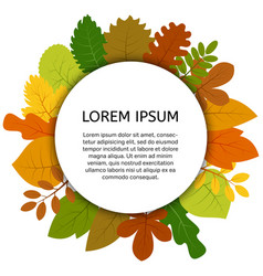 colorful autumn leaves under white round label vector image
