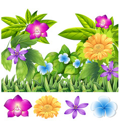 Colorful flowers in tropical garden vector