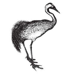 Crane vintage vector