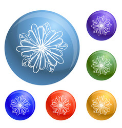 exotic tropical flower icons set vector image
