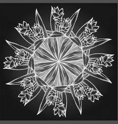 Graphic curcuma set vector