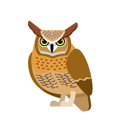 Owl is a bird prey mainly nocturnal birds vector