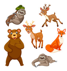 set of exotic animals vector image