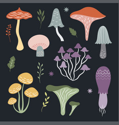 set of mushrooms on black background vector image