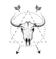 Skull bull with horns vector