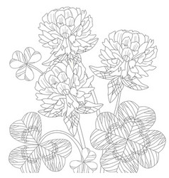 zentangle stylized clover hand drawn lace vector image