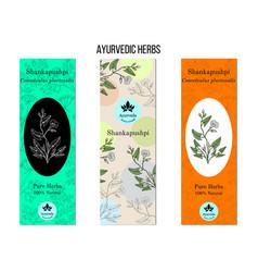Ayurvedic herbs banners shankapushpi vector