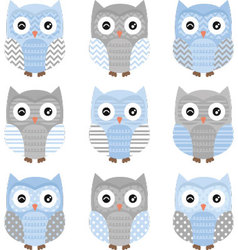 Blue and Grey Cute Owl Collections vector image
