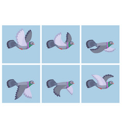 cartoon flying pigeon animation sprite vector image