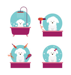 Dog in grooming shop or salon vector