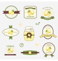 Lemon set of label design and templates vector