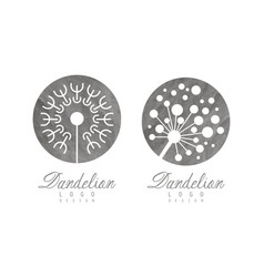 light dandelion fluffy flower head as logo design vector image