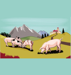 Pigs in a mountain meadow vector