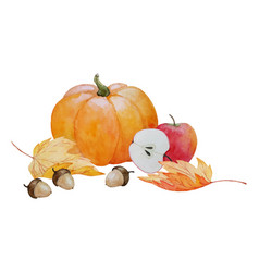 Pumpkin and acorns composition vector