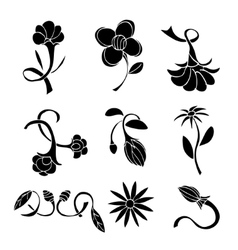 Set of black flower design elements vector image