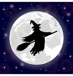 silhouette a witch full moon vector image