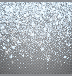 isolated christmas falling snow overlay on vector image vector image