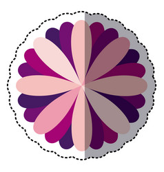 some color flower with petals icon vector image vector image