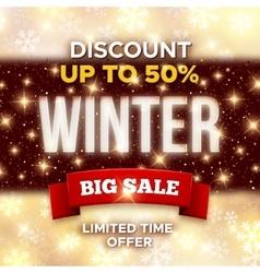 Big Winter Sale promotion banner template vector image