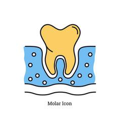 linear isolated icon - molar icon vector image