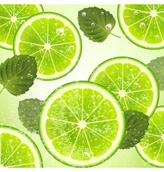 Background of Lime and Mint Leaves vector