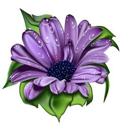 Beautiful violet flower vector