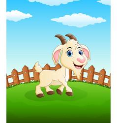 Happy goat cartoon on the field vector