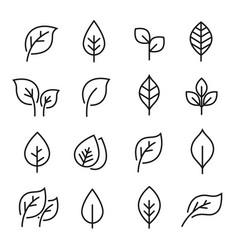 Leaf line icon set vector