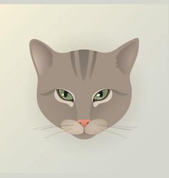 Portrait a lady cat vector