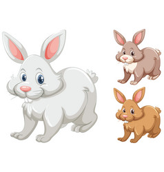 rabbits with three different colors vector image