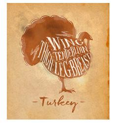 turkey cutting scheme craft vector image