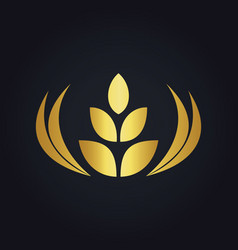 Wheat abstract food tree gold logo vector